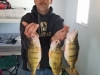 Tim with perch