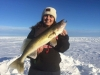 Walleye outside