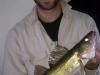 Dan Walleye Sweet's Fishing