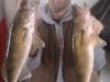 Teddy Walleye Sweet's Fishing