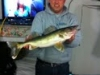 Sweet's Fishing Walleye
