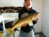 Beauty Walleye